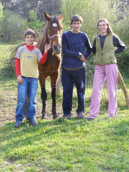 caballo agroturismo Sarasola-Zahar en Gipuzkoa