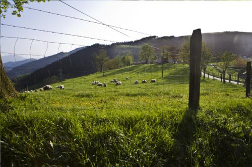 exterior agroturismo Lamaino Etxeberri en Gipuzkoa