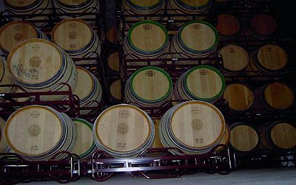 bodega agroturismo señorío de las viñas en Alava
