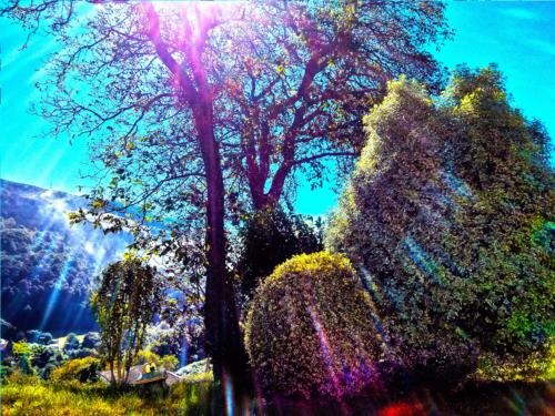 jardin casa rural aterbe en gipuzkoa