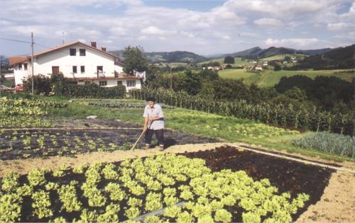 huerto agroturismo Enbutegi en Gipuzkoa