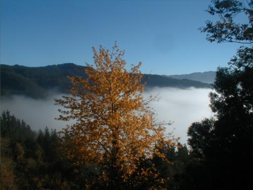 paisaje casa rural ametzola en Vizcaya