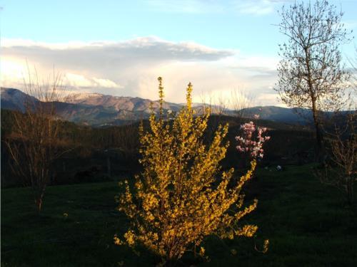 paisaje 1 casa rural ametzola en Vizcaya