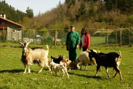 animales agroturismo Urresti en Bizkaia