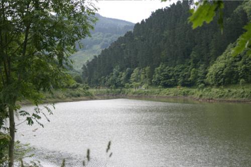 paisaje agroturismo amalau en Vizcaya