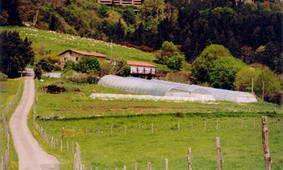 Paisaje 1 agroturismo Aristondo en Gipuzkoa