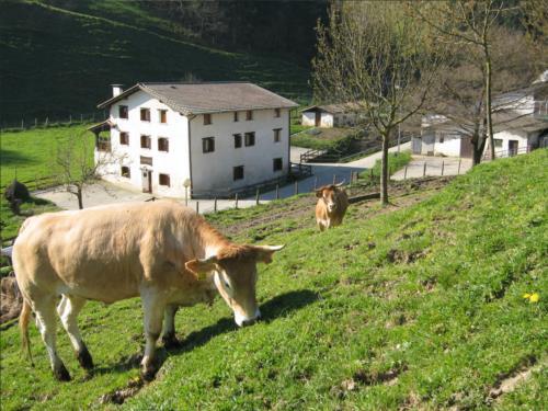 animales agroturismo Borda en Gipuzkoa