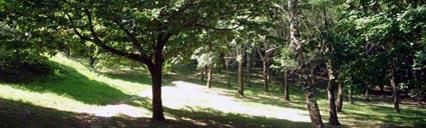 Pagoeta Natural Reserve