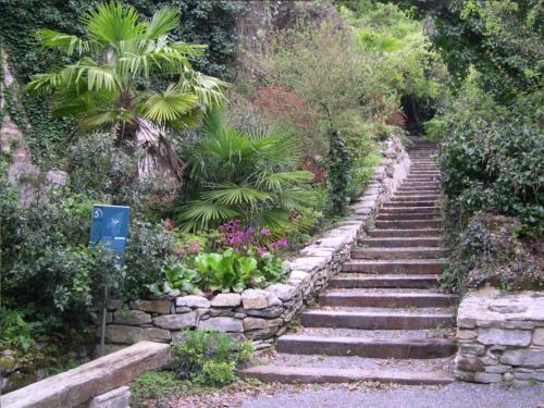 Jard n bot nico de santa catalina agroturismos casas for Como ir al jardin botanico