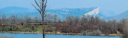 Izki Natural Reserve