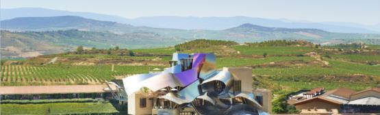 Marques de Riscal Wine Cellar