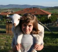 Visita la granja de Vitoria alojándote en su casa rural