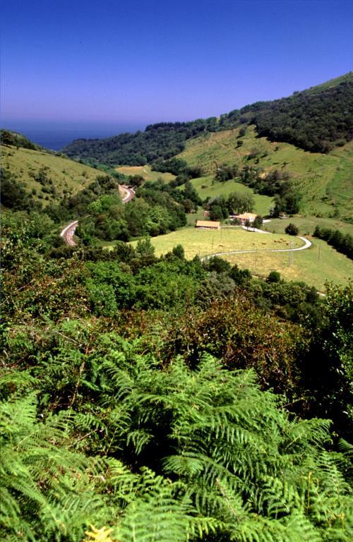 paisaje casa rural errota berri en gipuzkoa