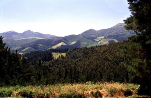paisaje agroturismo txindurri iturri en gipuzkoa