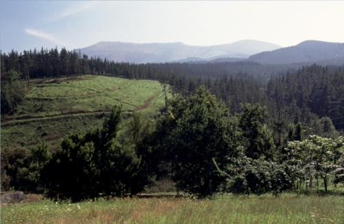 paisaje casa rural astorki goikoa en Vizcaya