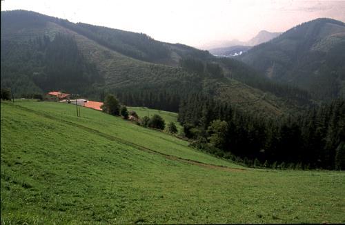 Paisaje agroturismo Barrenengua en Gipuzkoa