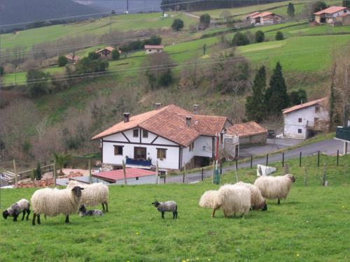 Animales agroturismo Kasa Barri en Bizkaia