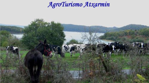 landscape farm house atxarmin in Alava