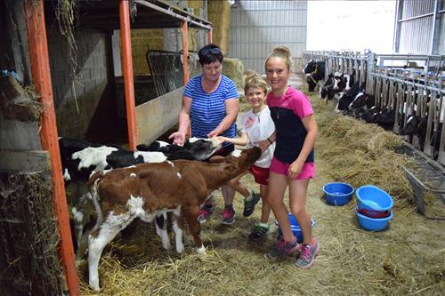 25endañeta deba alojamiento cercano a costa vacas niños