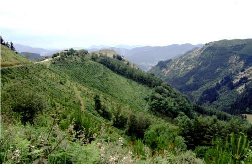paisaje agroturismo atxuri en gipuzkoa