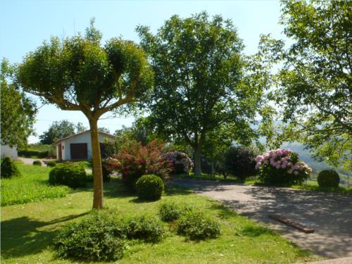 environment farm house zabale in Gipuzkoa