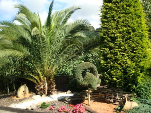 jardin casa rural Jesuskoa en Gipuzkoa