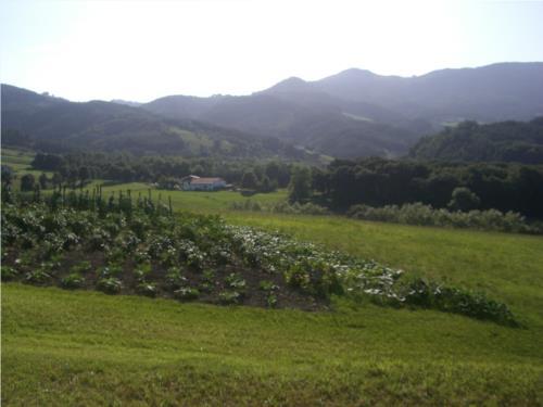 huerto agroturismoa Tolare Berri en Gipuzkoa